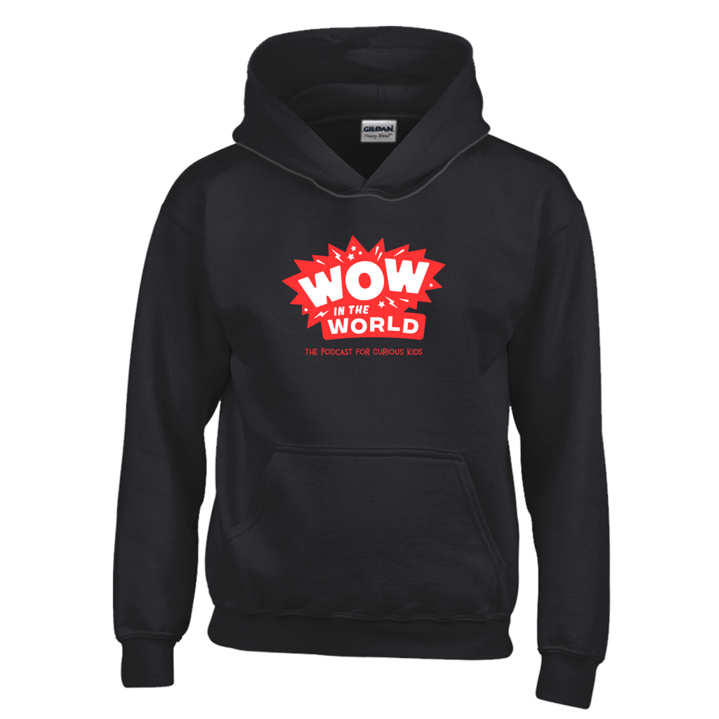 Wow in the World Youth Hoodie