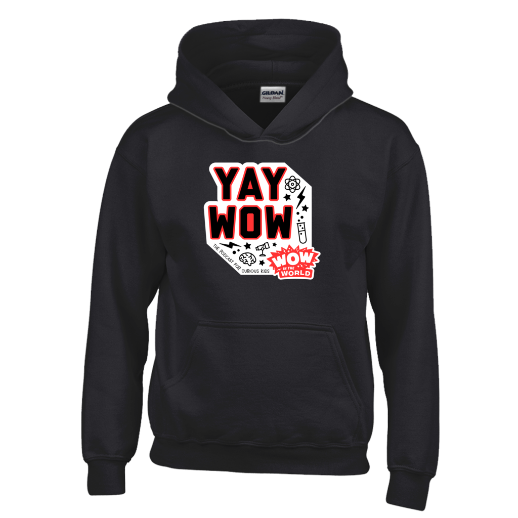 YAY WOW Youth Hoodie